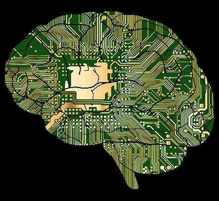 Vědci poprvé připojili lidský mozek na internet