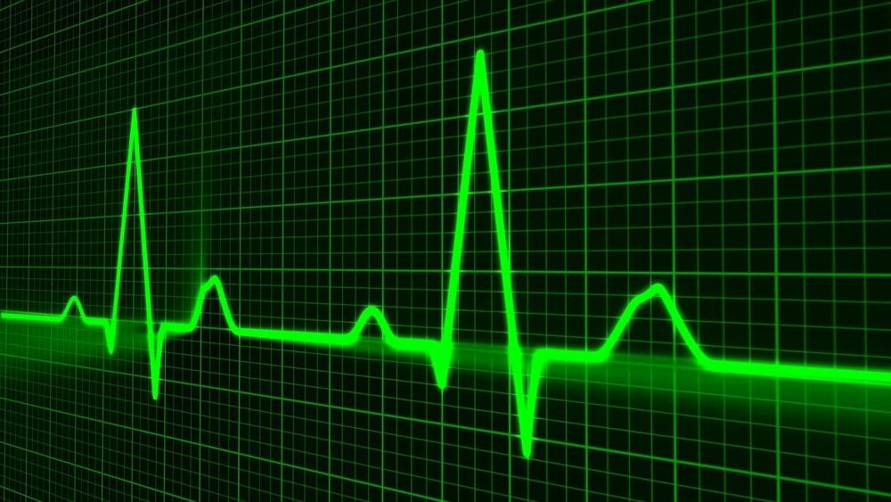 pulse-heartbeat-heart (1)