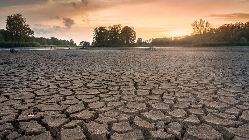 sucho krajina (1)