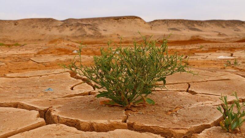 sucho klimaticke zmeny hdp