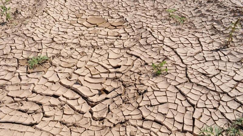 drought-sucho